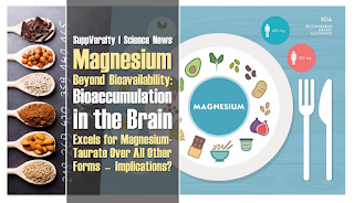 Magnesium - Beyond Bioavailability: Bioaccumulation in the Brain 1.2-Fold Higher for Mg-Taurate | No Effect on Muscle 2