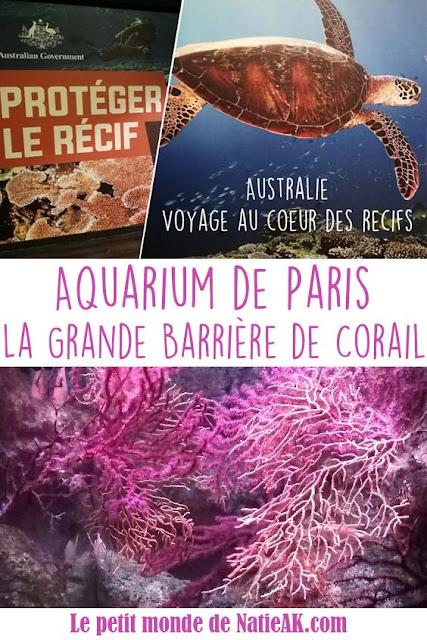 comment protéger la barrière de corail ?