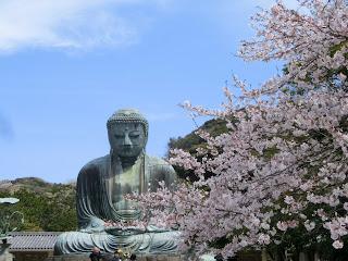 鎌倉大仏・桜