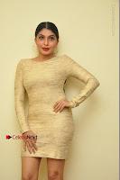 Actress Pooja Roshan Stills in Golden Short Dress at Box Movie Audio Launch  0112.JPG