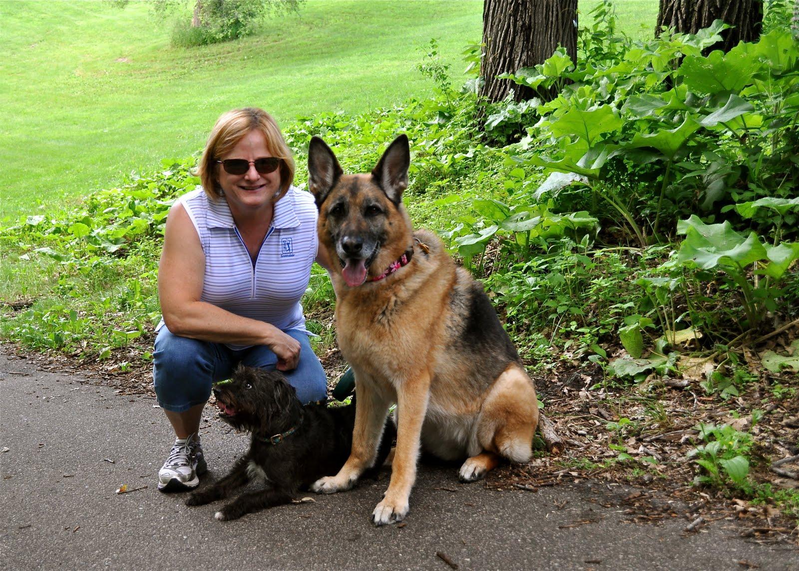 Shepherd Terrier Mix - Dog Training Home | Dog Types