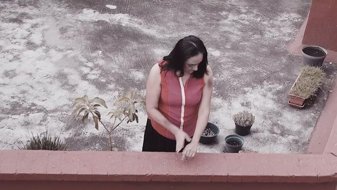 Cruces X Rosas crea el vídeo viral contra la violencia de género machista en el confinamiento