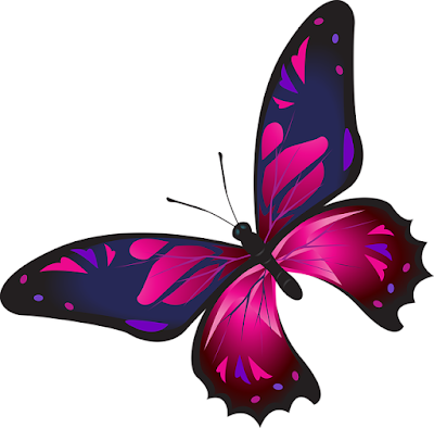 Gambar kupu kupu kartun keren