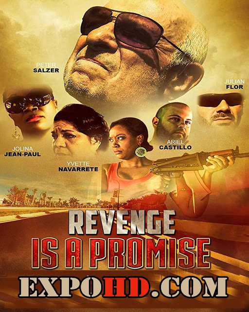 Revenge Is A Promise 2018 Full Movie Download 1080p | 720p | HDRip x265 ACC 1.3Gb