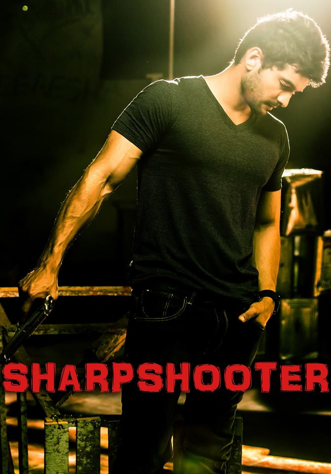 Sharp Shooter (2015) HDRip 300MB Hindi Dubbed Movie Download 480p