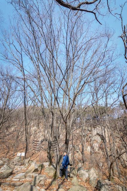 Bukhansan National Park Winter Hike @ Seoul, South Korea
