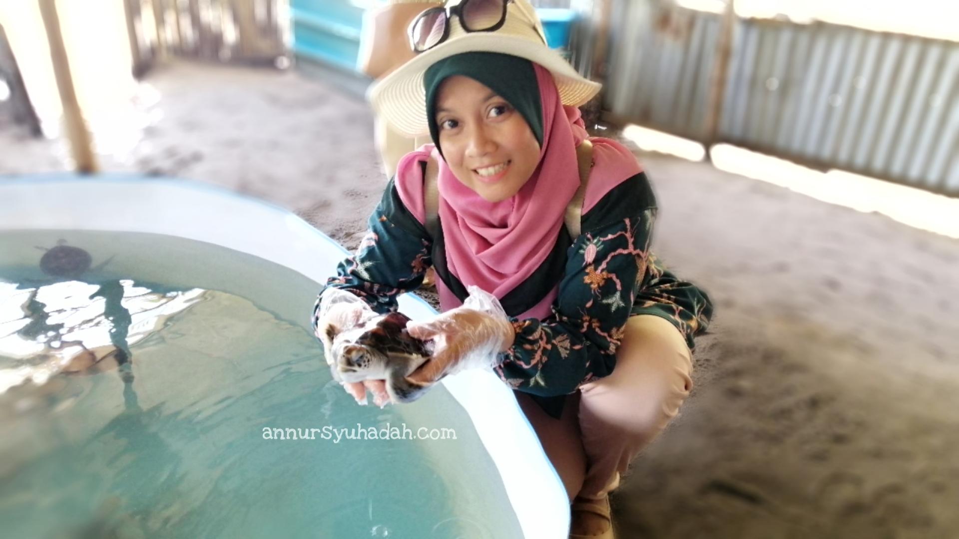 segari turtle sanctuary pasir panjang lumut
