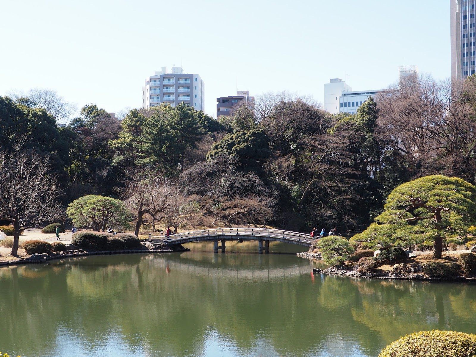 shinjuku tokyo gyoen national garden