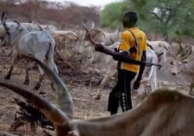 Insecurity: Tension Mounts Over Massive Influx Of Fulanis To The South