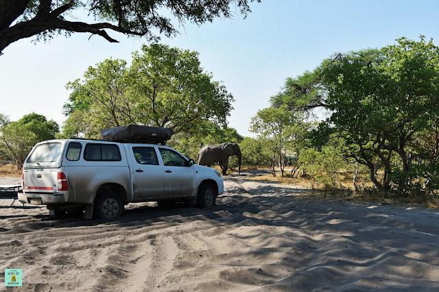 cámping de Savuti, Botswana