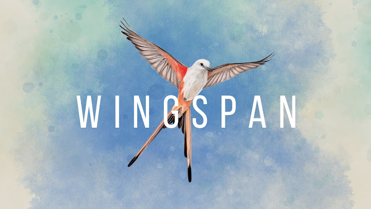 Wingspan Review - A Brand New Strategy Card Game For Nintendo Switch