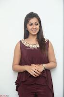 Nikki Galrani in a Brown Shining Sleeveless Gown at Nakshatram music launch ~  Exclusive 027.JPG