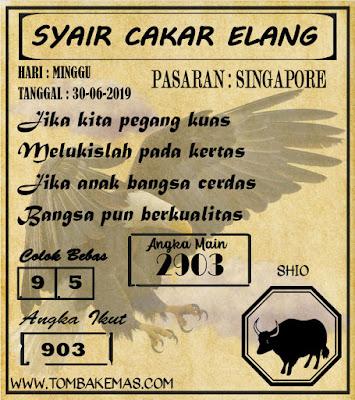 SYAIR SINGAPORE 30-06-2019