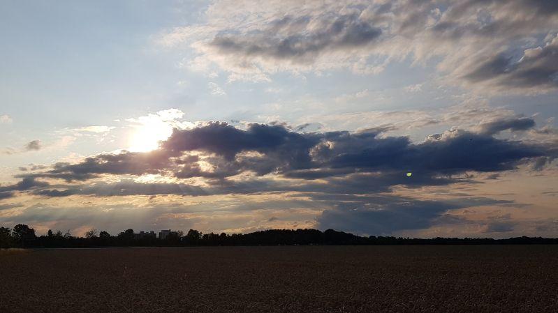 Sonnenuntergang überm Getreidefeld