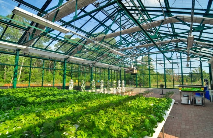 Detroit Hospital Takes a REAL Step toward Healing, Builds First Organic Hospital Greenhouse