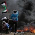 PB HMI Dorong Pemerintah Indonesia Angkat Persoalan Kekerasan Israel Terhadap Palestina di OKI
