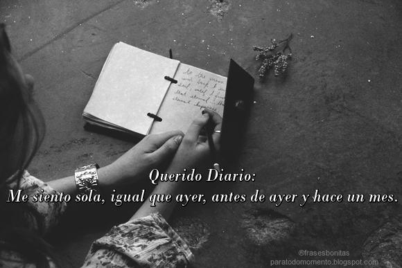 Querido Diario: Me siento sola, igual que ayer, antes de ayer y hace un mes.