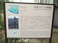 Desert and savanna plants - Kyoto Botanical Gardens Conservatory, Japan