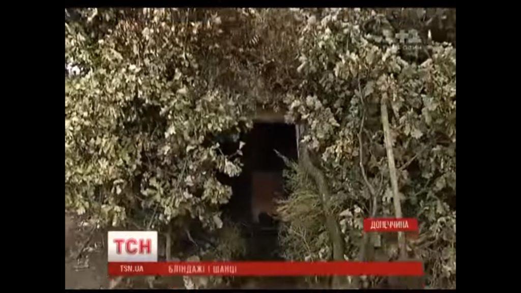 Видео поймали в лесу фото 153-561