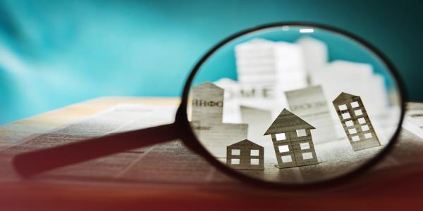 Real Estate Stockholder