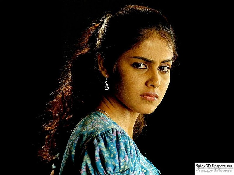 Genelia D Souza Wallpapers 30 Hd Pics: HD Wallpaper Of Genelia D'Souza Hot