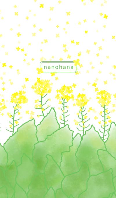 nanohana ~Canola flower~