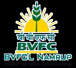 logo-bvfcl