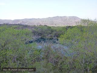 Cenotes+de+Candelaria+Guatemala+%252817%2529 - Guía turística – Cenotes de Candelaria