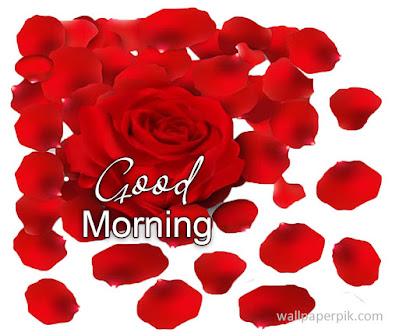 good morning wallpaper hd images photos