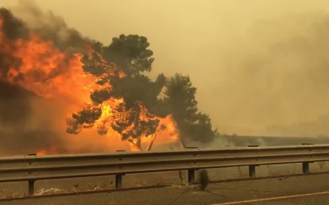 Fire Updates- Evacuations Ongoing as Bay Area Swallowed by the Multiple Blaze