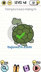 Tolong kura-kura malang ini brain test