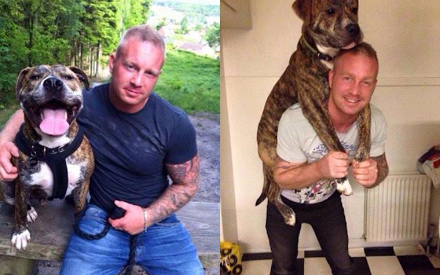 Người chủ Tự sát vì mất chú chó Pit Bull