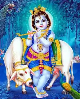 krishna radha shayari image