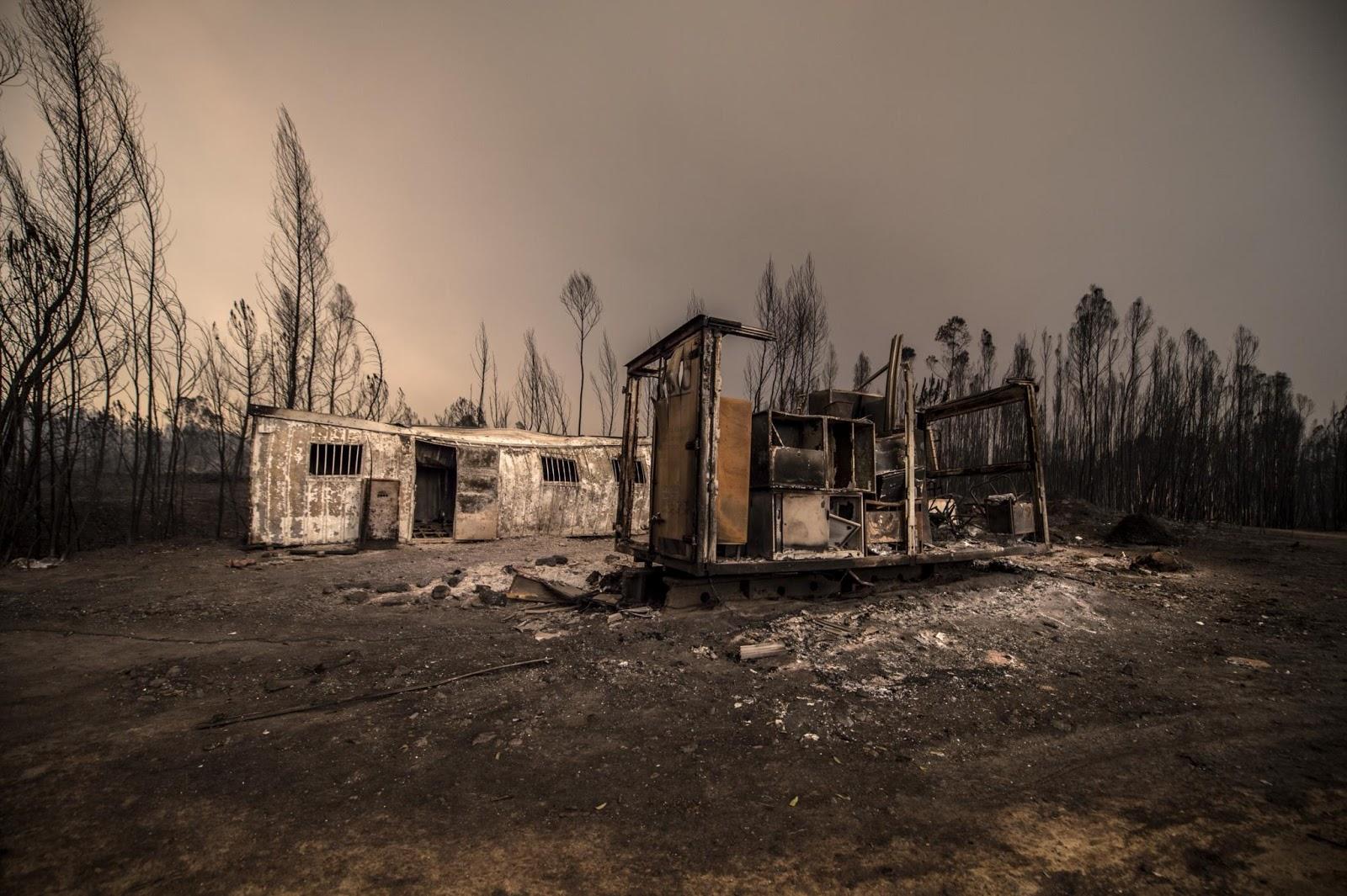 Inferno Em Chamas Ele um jeito manso: com parte do meu país caído num inferno em chamas