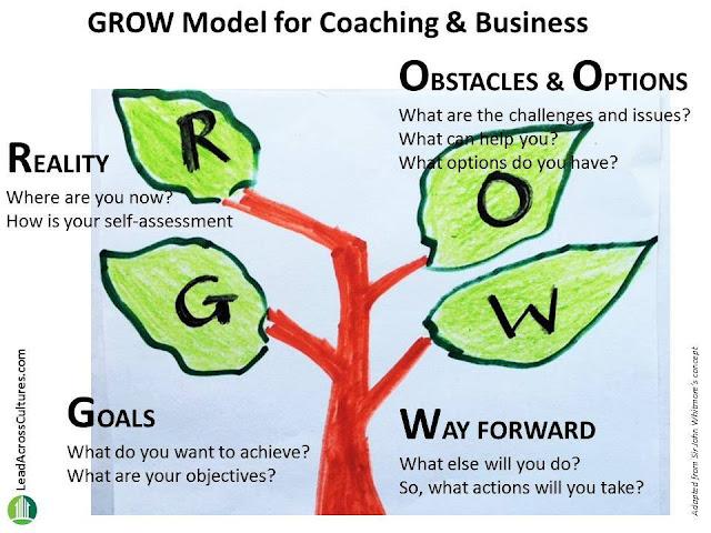 Grow Model Cho Tăng Trưởng Doanh Nghiệp, Hoàn Thiện Bản Thân & Coaching