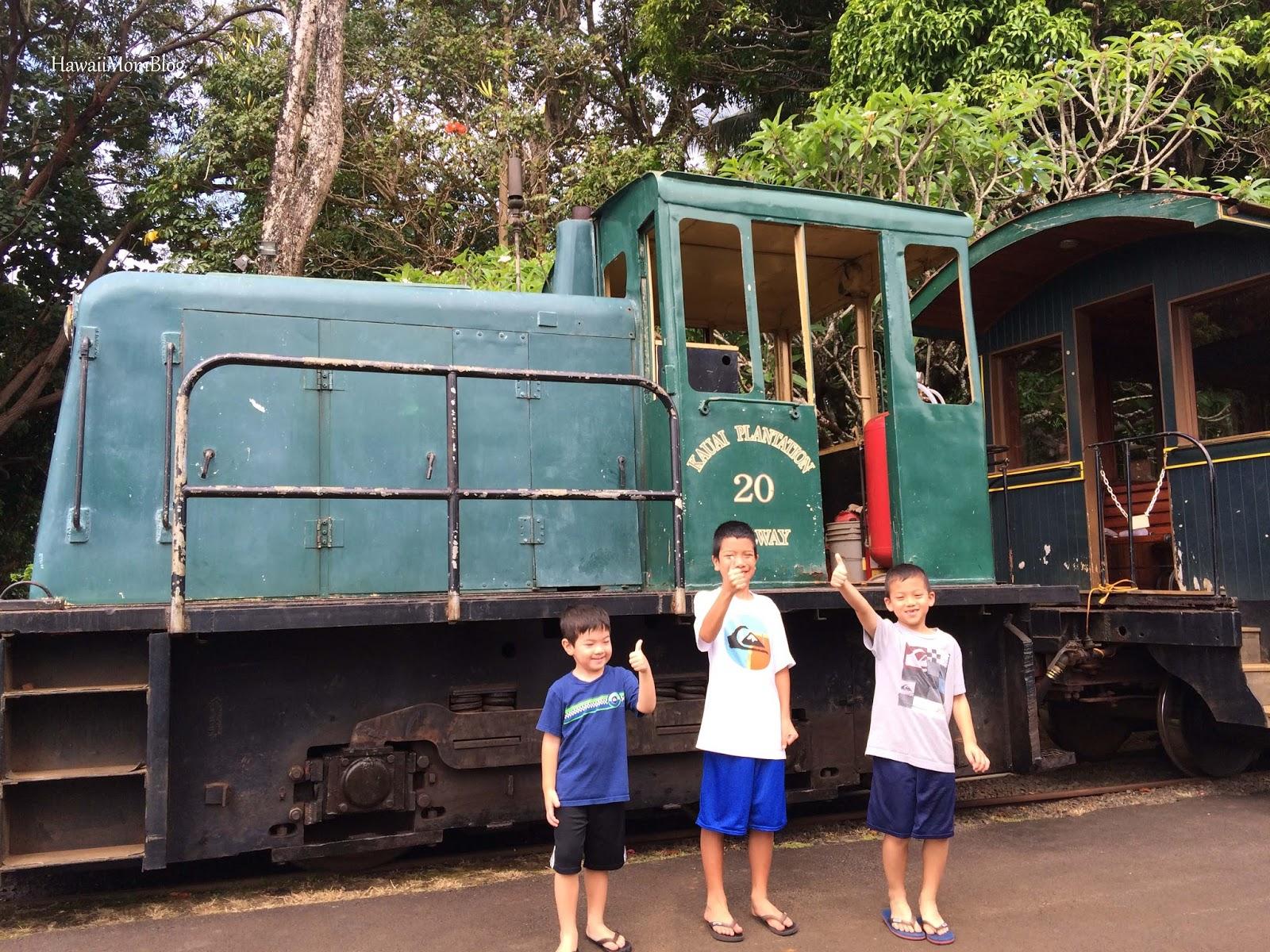 Kilohana Signature Train Tour