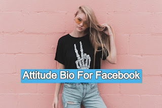 Attitude bio for Facebook