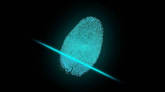 Why do we have fingerprints?