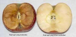 Potongan apel yang mengalami proses browning
