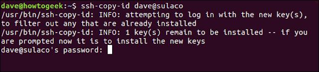 ssh-copy-id مع كلمة المرور الفورية في نافذة