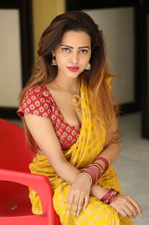 Geetha Shah Looks In Saree 24