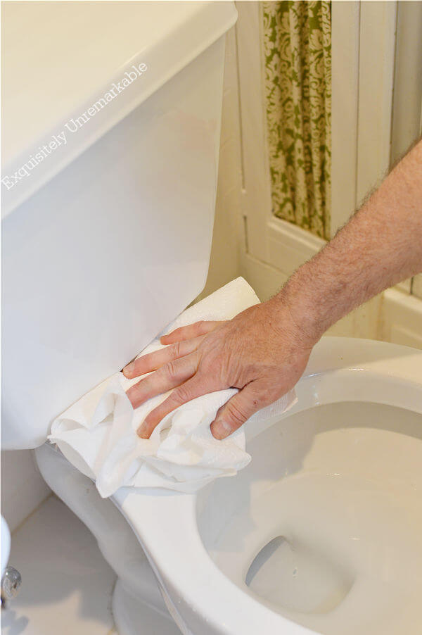 Cleaning A Toilet Seat