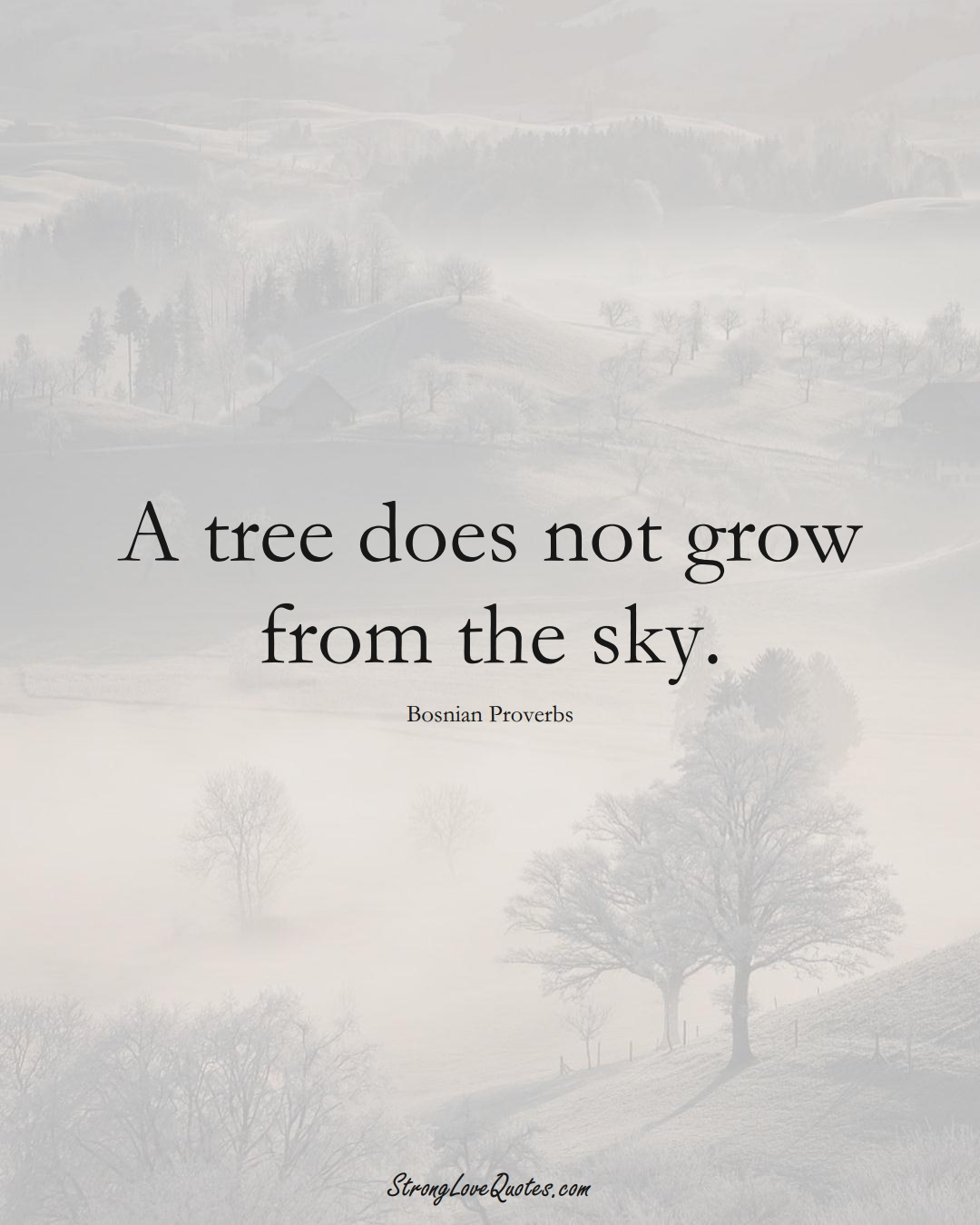 A tree does not grow from the sky. (Bosnian Sayings);  #EuropeanSayings