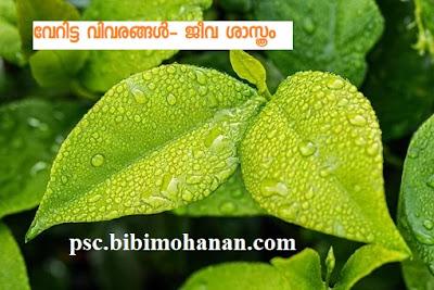 സസ്യ ശാസ്ത്രം Botany Important Questions ജീവ ശാസ്ത്രം Biology-LDC-LGS-LP UP Assistant