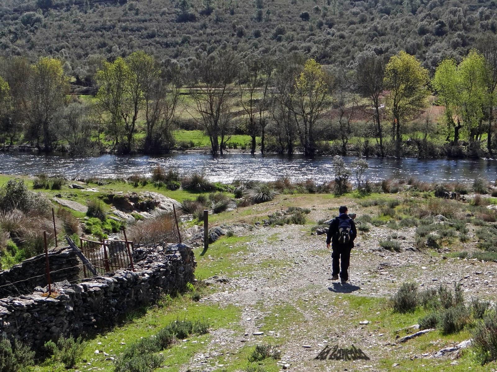 Resultado de imagen de caminante en la Vera de Cáceres en blanco y negro
