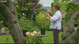 Susannah Applegate from Hurst Brook Plants