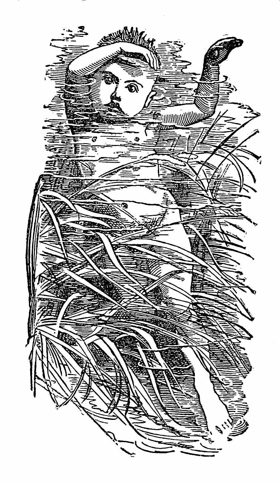 a Linley Sambourne 1880s children's book illustration of a baby underwater in a marsh wetland pond
