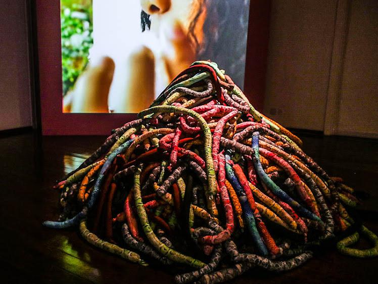 Ninho de cobra, de Ieda Oliveira