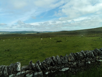 Photo of a field with dry stone walls around it. It is very high up and the sky is clear and blue.