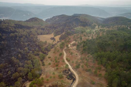 Medio Ambiente elabora el 'Decálogo de Valencia' para planificar la defensa integrada frente a los grandes incendios forestales
